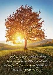Postkarten: Gottes Segen umgebe dich  12 Stück