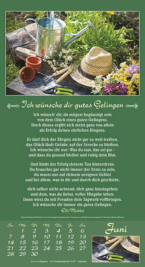Zeit zum Leben 2019 - Elli Michler - sendbuch.de